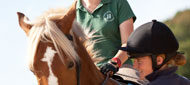 Senior Equitation and Coaching