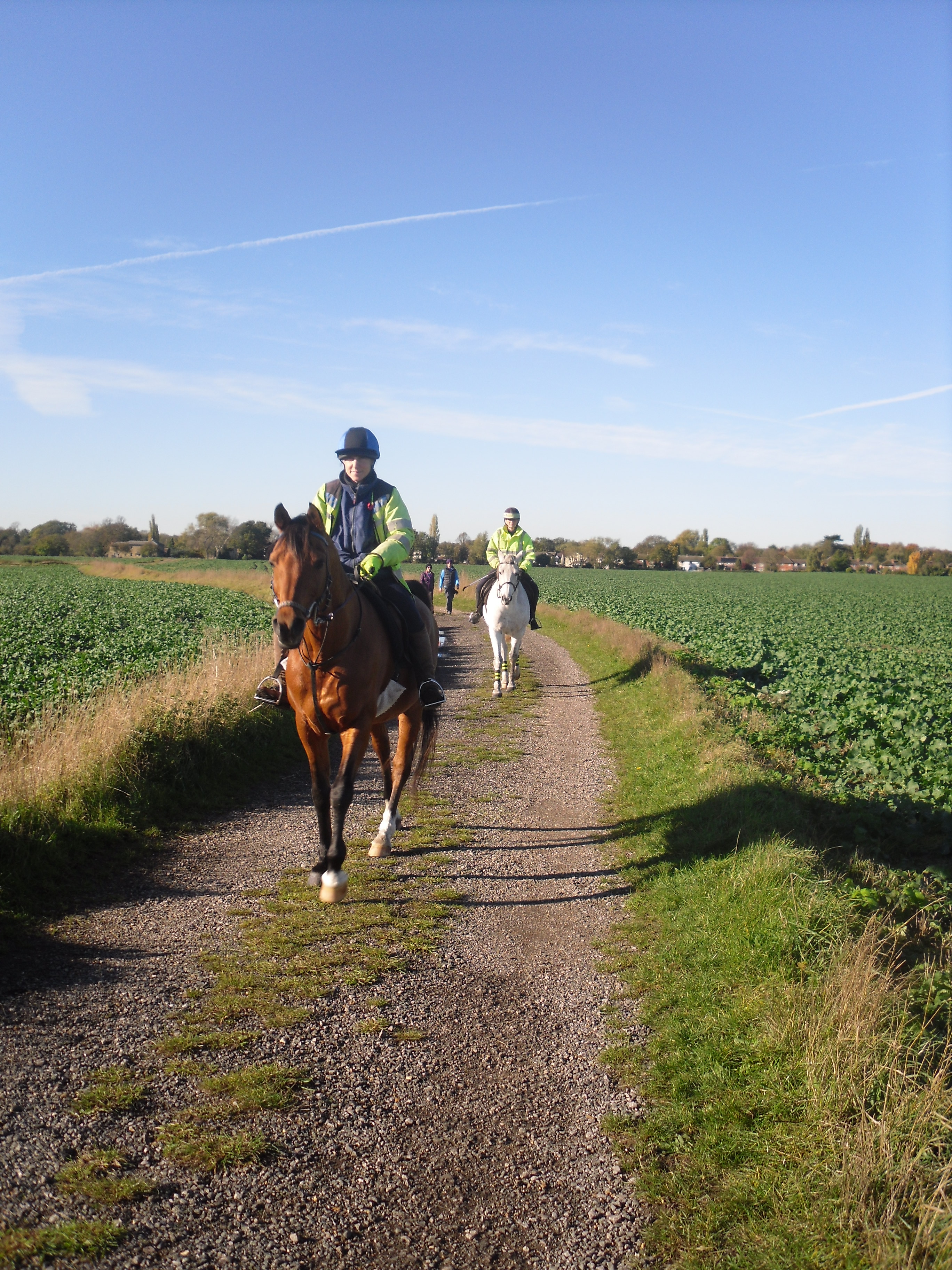 Hard work pays off for Shelford and District Bridleways Group following the upgrade of two footpaths linking three villages