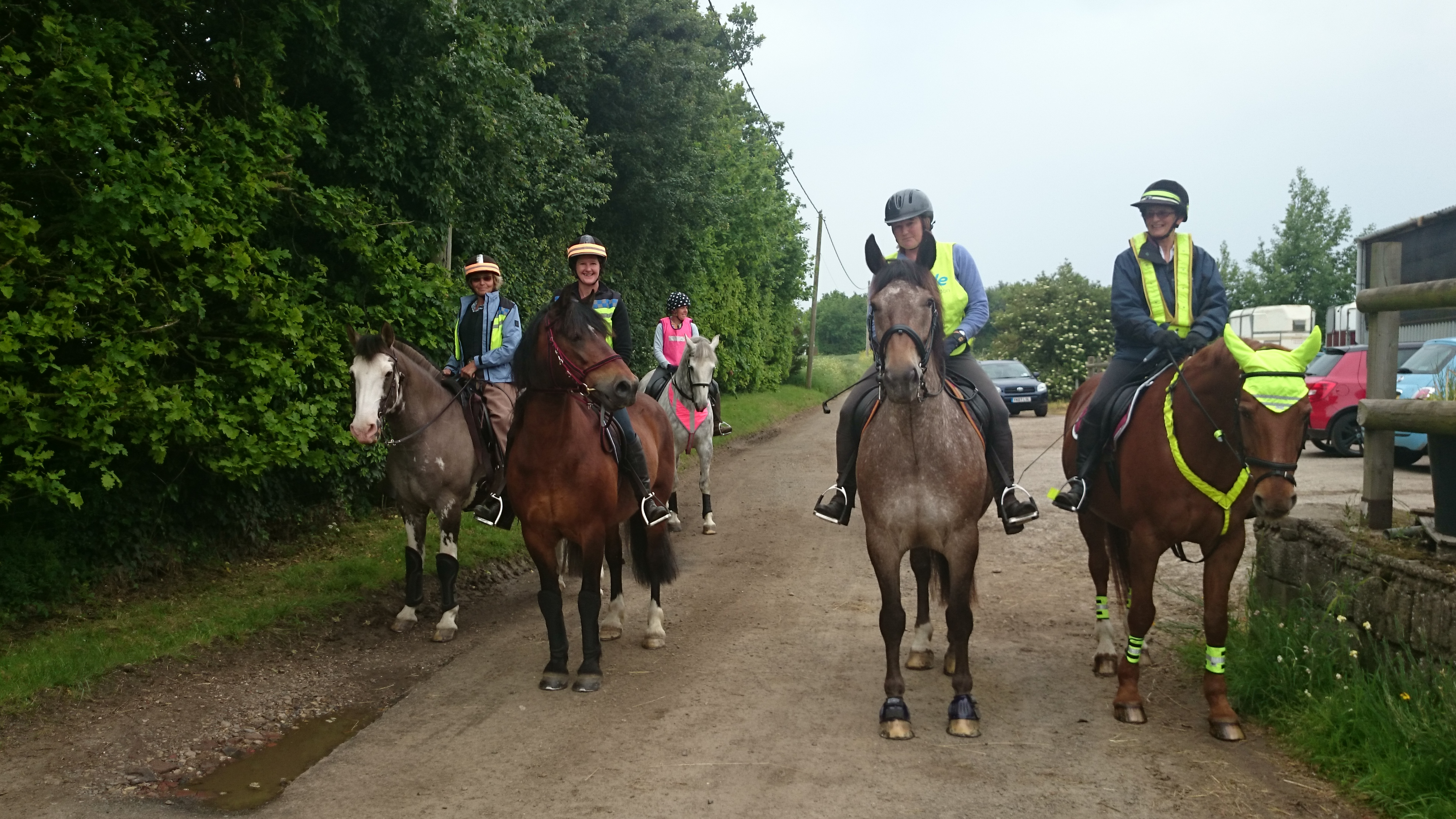 Horses waiting to go for a hack