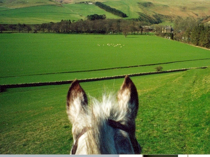 Through horses ears at Clennell