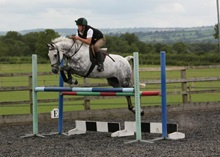 Grey horse jumping fence
