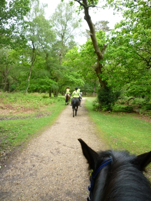 Riding in the inclosure