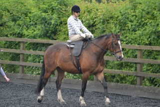 Side Saddle 2