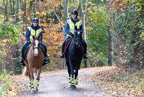Two horse riders with high visibility clothing