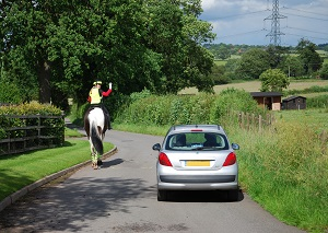 Image for Charity calls for a reduction in national speed limit on country roads to save lives