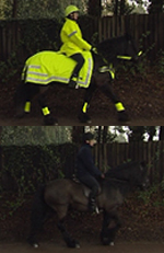 Horse and rider with hi-viz and without