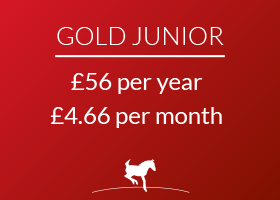 Gold Junior