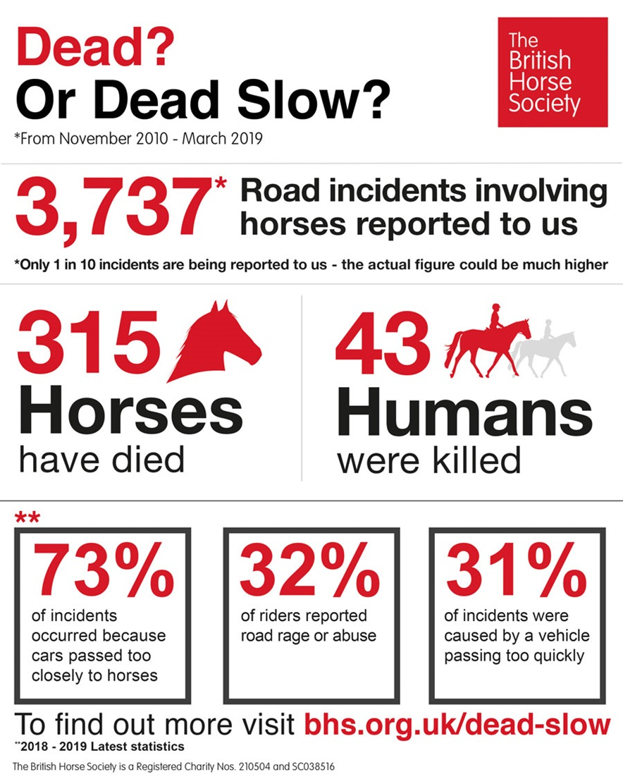 Dead? Or Dead Slow? Infographic